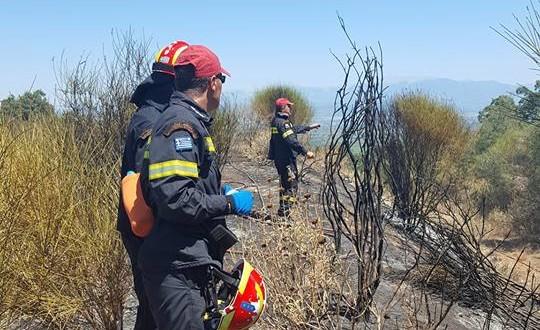 Υπό έλεγχο η φωτιά στην Παλαιομάνινα (ΦΩΤΟ)