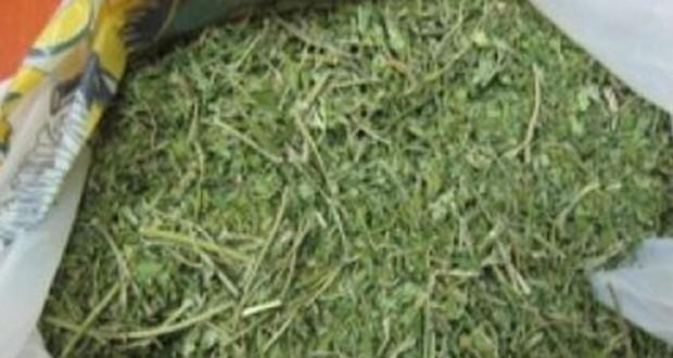 Πως έγινε η σύλληψη του 33χρονου για κατοχή ναρκωτικών στον Αστακό.Τι βρέθηκε στο σπίτι του