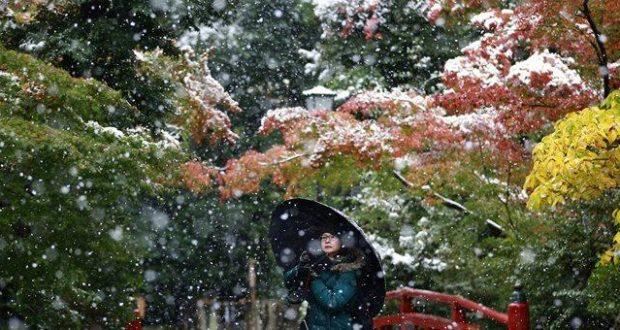 Φθινοπωρινό χιόνι στο Τόκιο μετά από 54 χρόνια!
