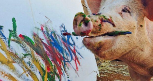 Και όμως αυτό το γουρούνι… ζωγραφίζει!