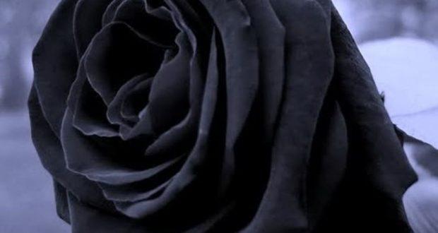 Ηλεία: Σκοτώθηκε ο Νίκος Φωτόπουλος – Τα τελευταία λόγια της ζωής του και η μάχη με τον θάνατο (Φωτό)