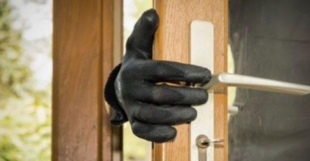 Ηλεία: Σχηματισμός δικογραφίας σε βάρος αγνώστων δραστώνγια κλοπή