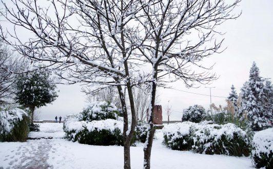Χιονόπτωση στα Γιάννενα – Αγώνας να μείνουν οι δρόμοι ανοιχτοί!