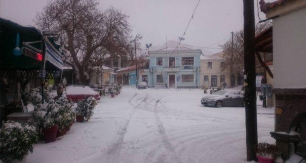 Τα κλειστά σχολεία στον Δήμο Αγρινίου