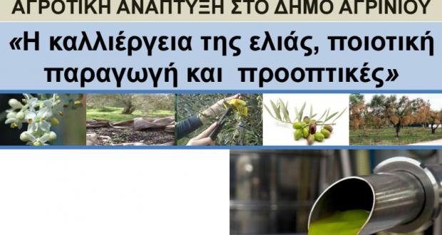Ματαράγκα: Ημερίδα για την Καλλιέργεια της ελιάς, την Ποιοτική Παραγωγή και τις Προοπτικές