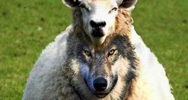 Ένωση Αγρινίου: Επικίνδυνα παιχνίδια από GAIA με τις επιδοτήσεις των αγροτών, στην Αιτωλοακαρνανία