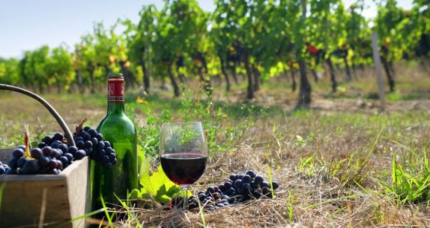 4,8 εκατ. ευρώ για προγράμματα προώθησης του ελληνικού κρασιού στο εξωτερικό