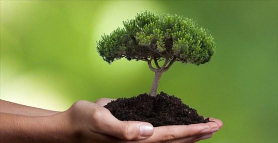 Δ/ντής Δασών Αιτωλ/νίας: 21 Μαρτίου – Παγκόσμια Ημέρα Δασοπονίας