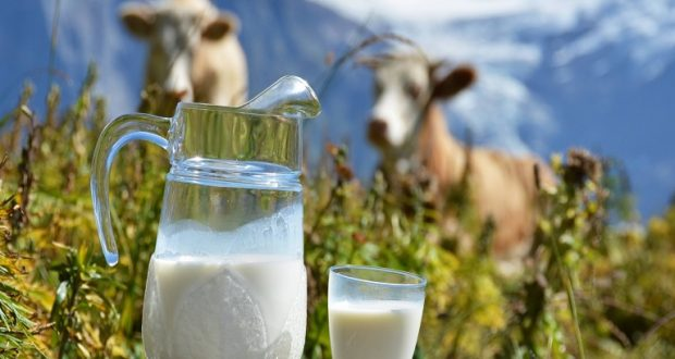 Ένωση Αγρινίου: Σε διαβούλευση η υποχρεωτική σήμανση σε κρέας και γάλα