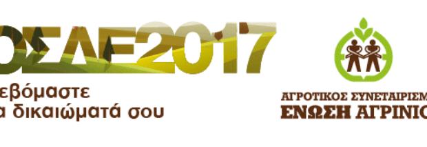 ΟΣΔΕ 2017 → Συνεταιριστικά, Σταθερά Ένωση Αγρινίου
