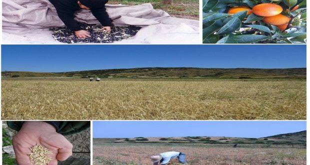 Ένωση Αγρινίου: Τοπικές Ποικιλίες: 4η Επιστημονική Συνάντηση