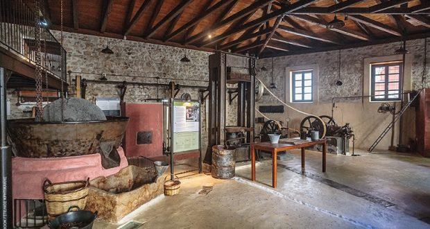 Η Ένωση Αγρινίου για την ανάγκη δημιουργίας Μουσείου Ελιάς