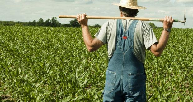 Επιπλέον 294 νέοι αγρότες εντάσσονται σε πρόγραμμα ενίσχυσης από την Π.Δ.Ε.