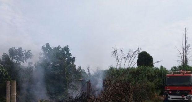 Καλύβια: Φωτιά κατέκαψε γεωργική αποθήκη και καλαμιώνα (Φωτογραφίες)