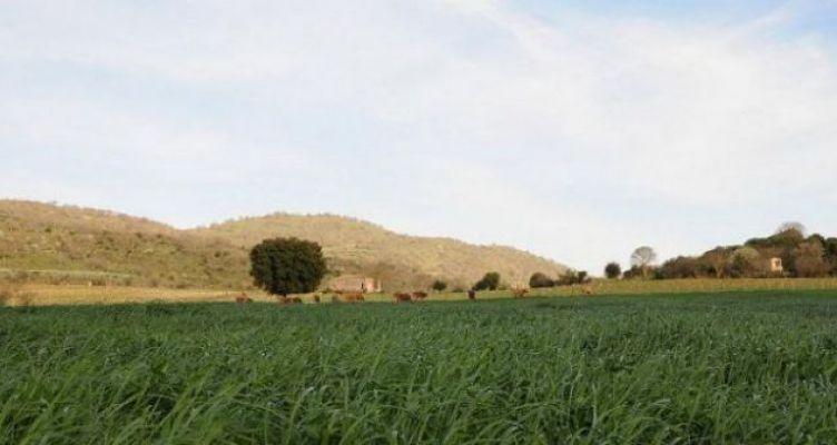 Ένωση Αγρινίου: Ομάδες Παραγωγών – Η πρόκληση της νέας εποχής για τον αγροτικό τομέα