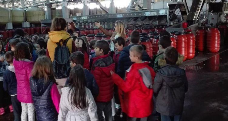 Ένωση Αγρινίου: Βιωματική εκπαίδευση μαθητών στη βρώσιμη ελιά