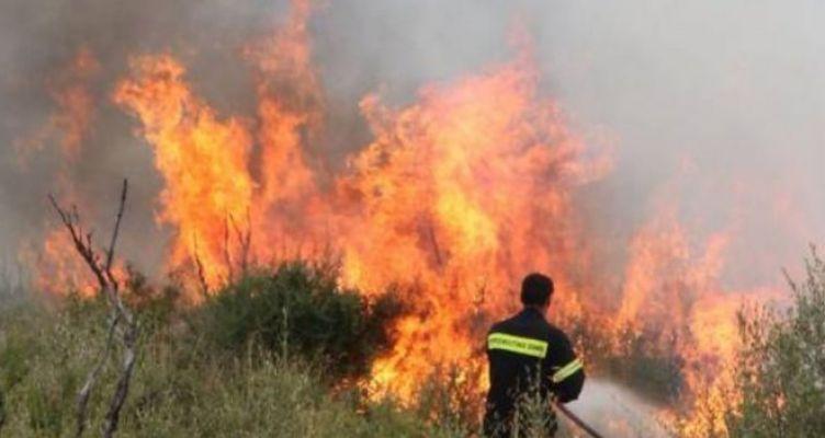 Νέα πυρκαγιά στην Ηλεία στην περιοχή Φρίξα – Φόβοι και για τον αρχαιολογικό χώρο στην Ολυμπία