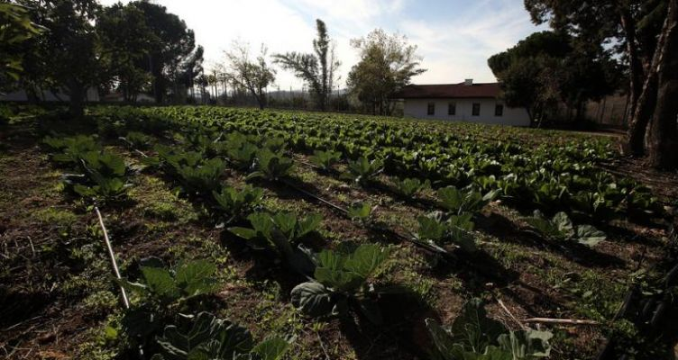 Ενημέρωση για το Πρόγραμμα Βιολογικών Καλλιεργειών στον Αγροτικό Συνεταιρισμό Καινούργιου