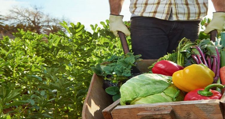 Μεσολόγγι: Ημερίδα για τον Αγροδιατροφικό Τομέα του έργου «AgroInnoEco»