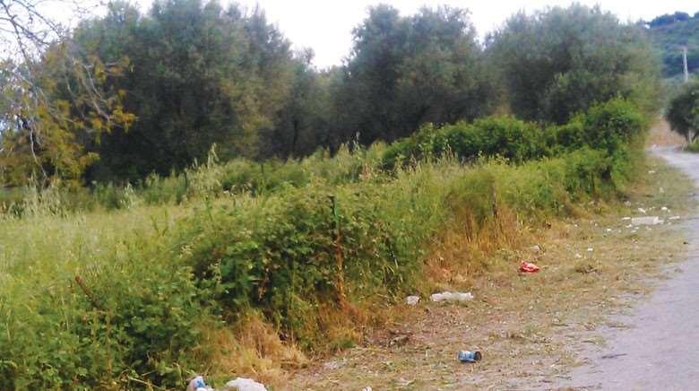 Αποτέλεσμα εικόνας για Ακαθάριστα οικόπεδα Αγρινίου: «Κίνδυνος – θάνατος για περιουσίες και ζωές»