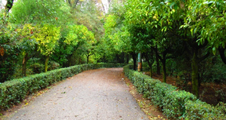 Αγρίνιο: Φωταγώγηση μεγάλου τμήματος του πάρκου (Φωτορεπορτάζ)