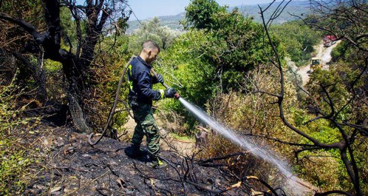 Φωτιά στην Άρλα Αχαΐας, απειλήθηκε το χωριό