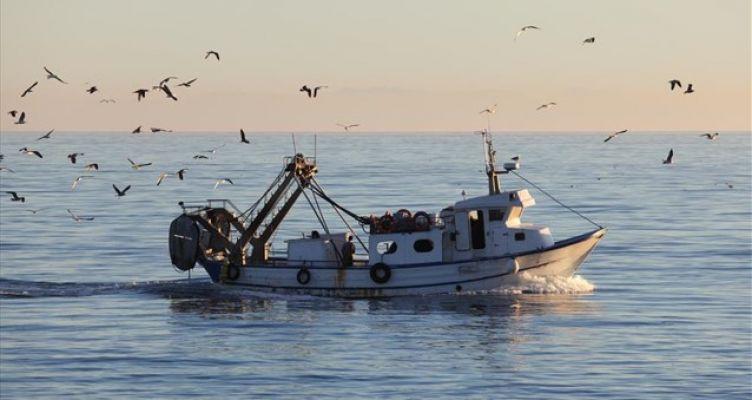 Ερώτηση Κ. Καραγκούνη για την παράνομη αλιεία στον Αμβρακικό