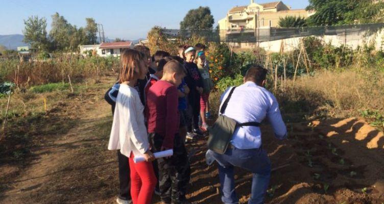 Επίσκεψη μαθητών του 1ου Δημοτικού  στον λαχανόκηπο του Δ. Αγρινίου