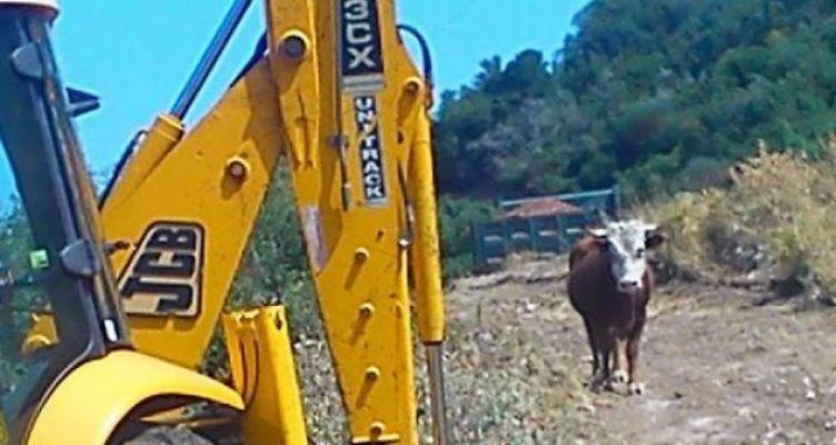 Ο πρόεδρος της Τ.Κ. Θυρρείου για αντικανονικές διαδικασίες σε συντήρηση αγροτικού δρόμου