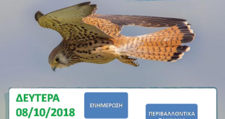 Δράση Ενημέρωσης του Φ.Δ./Λ.Μ.-Α.Ο. για την Ευρωπαϊκή Γιορτή Πουλιών 2018