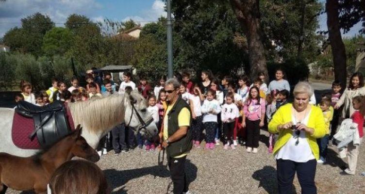Δημοτικό Σχολείο Καλυβίων Αγρινίου: Ημέρα Σχολικού Αθλητισμού (Φωτό)