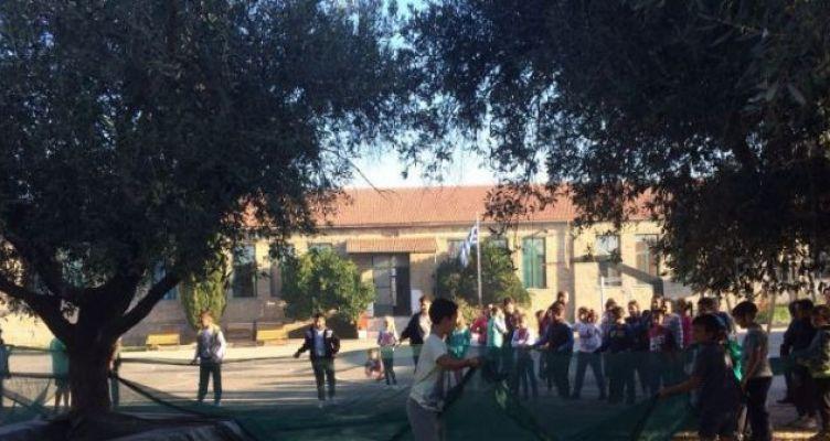 «Λιομάζεμα» από μαθητές στο Δημοτικό Σχολείο Δοκιμίου (Φωτό)