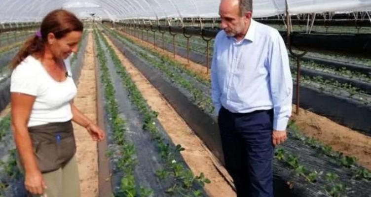 1.731 νέοι αγρότες χρηματοδοτούνται με 33.414.500 ευρώ