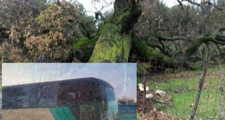 Περιπέτεια για τους επιβάτες λεωφορείου του ΚΤΕΛ από Μύτικα-Αγρίνιο
