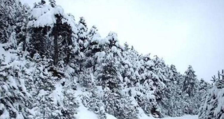 Ορεινή Ναυπακτία: Χωριά χωρίς πρόσβαση – Ανοικτό το κεντρικό οδικό δίκτυο