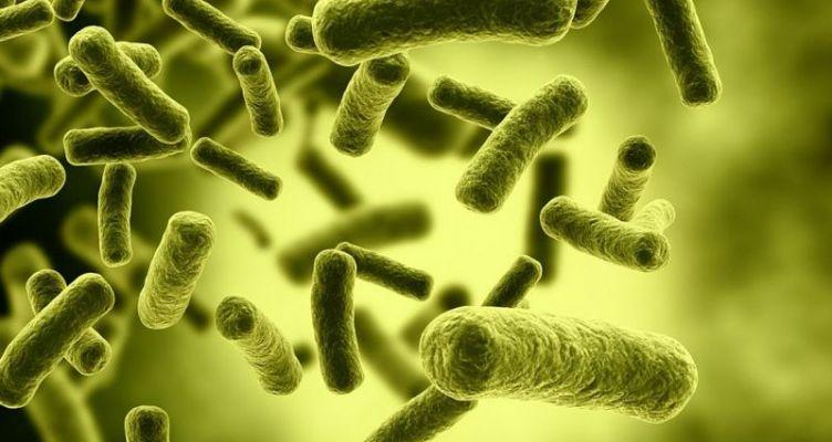 «Σαρώνει» η γρίπη Η1Ν1 – Σε έξαρση και τις επόμενες εβδομάδες