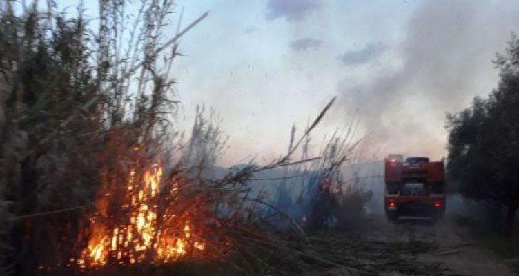 Πρόληψη δασικών πυρκαγιών – Απαγορεύσεις της Π.Ε. Αιτωλοακαρνανίας