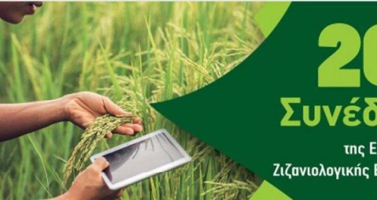 Αγρίνιο: 20ο Πανελλήνιο Συνέδριο της Ελληνικής Ζιζανιολογικής Εταιρείας