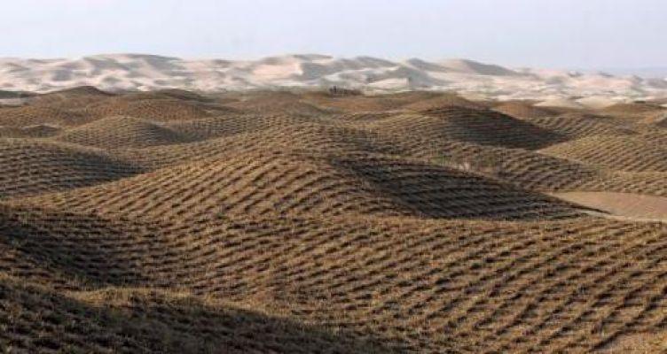 Κίνδυνος για ερημοποίηση του 1/3 των εδαφών της Ελλάδας