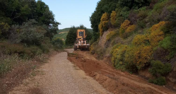 Δήμος Πατρέων: Καθαρισμός Αγροτικού Δρόμου στην Άνω Ροδινή