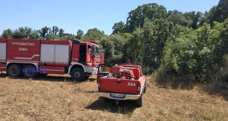 Παλαιομάνινα Ξηρομέρου: Έχει τεθεί υπό έλεγχο η φωτιά – Κάηκαν πάνω από 50 στρέμματα