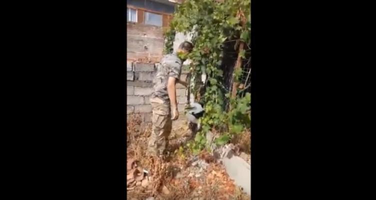 Νεότερη ενημέρωση του Ν. Πατερέκα για τον Λευκοπελαργό στα Καλύβια Αγρινίου (Βίντεο)