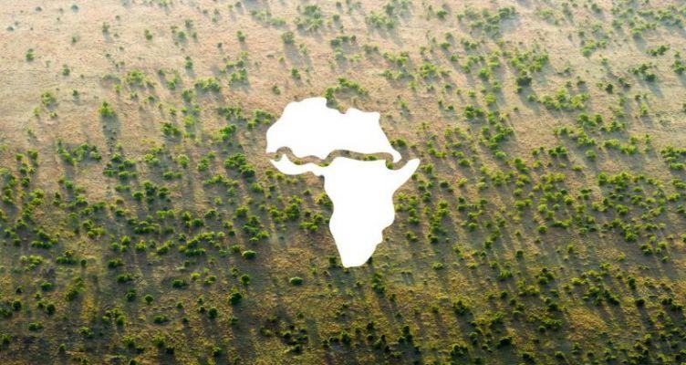 Το Μέγα Πράσινο Τείχος: 20 αφρικανικές χώρες πραγματοποιούν ένα απίθανο εγχείρημα (Βίντεο)