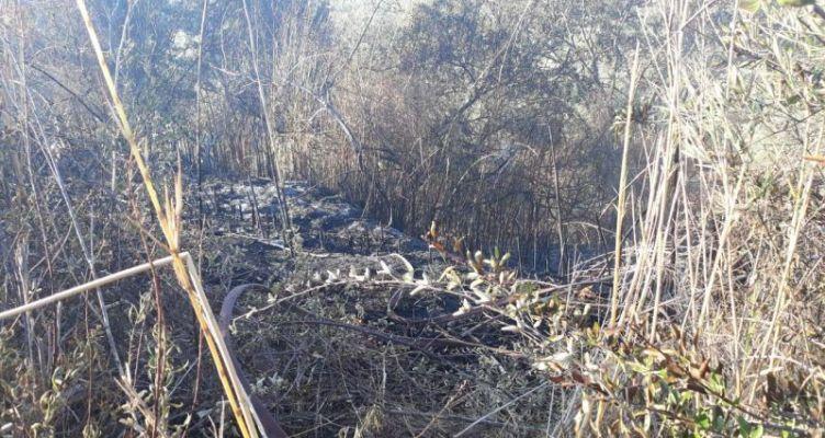 Καινούργιο Αγρινίου: Συναγερμός στην Π.Υ. για νέα φωτιά στα Τζιφέικα