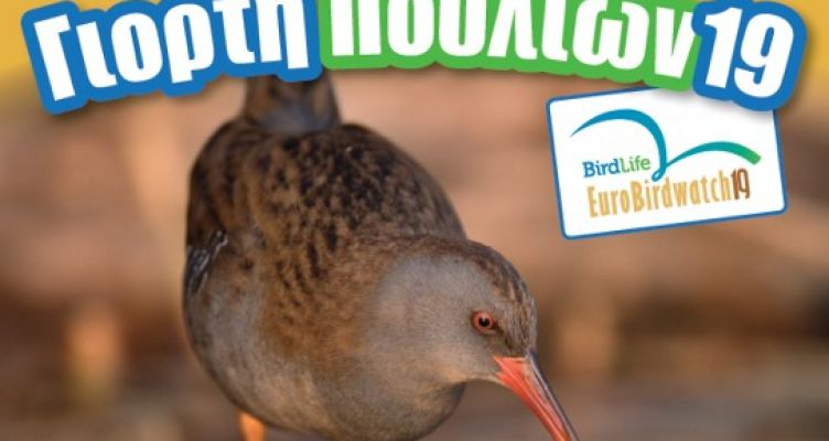 Μεσολόγγι: Την Παρασκευή η Ευρωπαϊκή Γιορτή Πουλιών