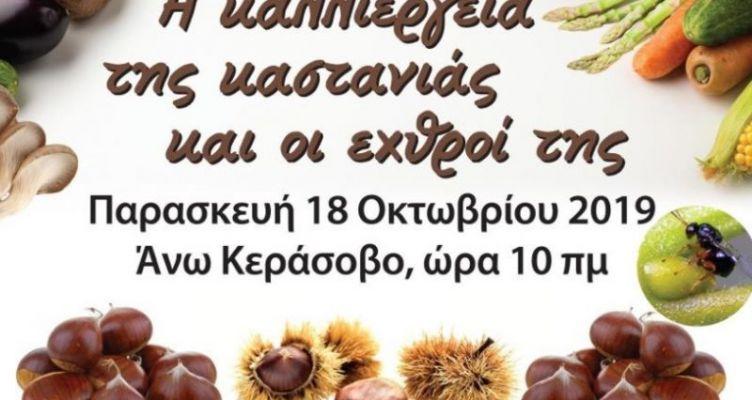 Δήμος Αγρινίου: Hμερίδα για την καστανιά στο Άνω Κεράασοβο
