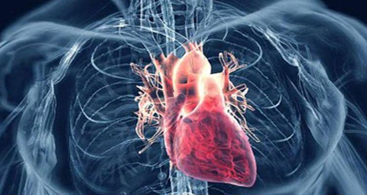 Έρευνα: Αυξημένος ο κίνδυνος καρδιαγγειακής νόσου για όσους έχουν χάσει τα δόντια τους