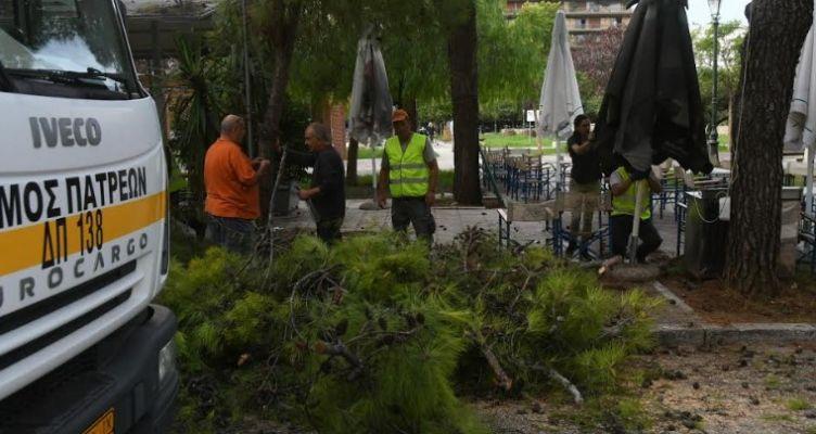 Δήμος Πατρέων: Εργασίες κλαδέματος στην πλατεία Υψηλών Αλωνίων