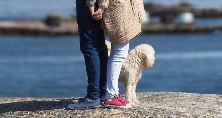 Έρευνα: Αυξημένο προσδόκιμο ζωής γι'αυτούς που έχουν σκύλο