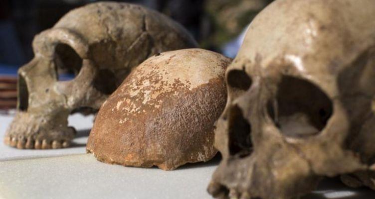 Αθώοι οι άνθρωποι για την εξαφάνιση των Νεάντερταλ